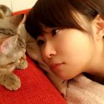 指原莉乃の可愛すぎる猫(マンチカン)の気になる名前や画像!発情期で手術?