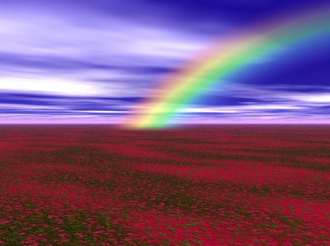 高橋優「虹」歌詞の意味!甲子園球児以外にも響く温かい応援歌