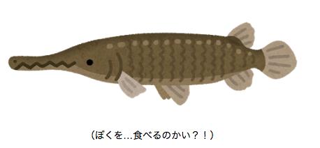 アリゲーターガーの釣り方や捕獲方法!食べるとどんな味がする?